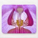 Orquídea Alfombrilla De Raton