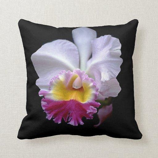 Orquídea, almohada