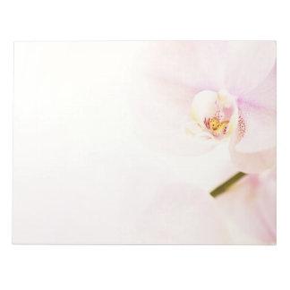 Orquídea - alta flor dominante rosada - plantilla bloc de notas