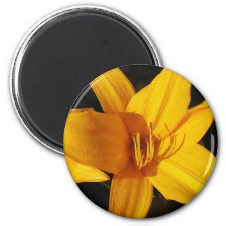 Orquídea amarilla imán redondo 5 cm