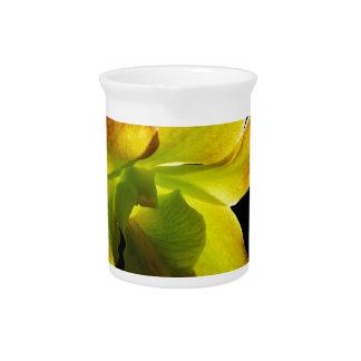 Orquídea amarilla jarron