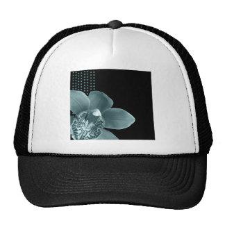 Orquídea azul en negro gorros