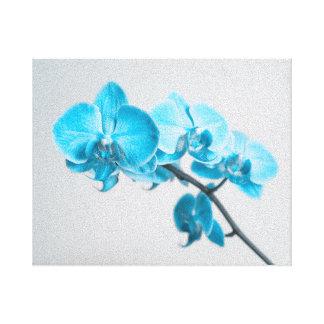 orquídea azul impresión en lienzo estirada