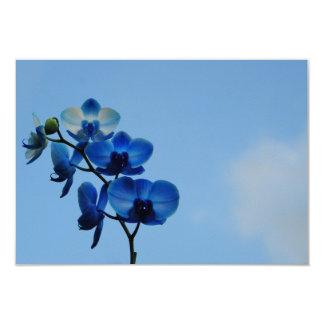 """Orquídea azul invitación 3.5"""" x 5"""""""