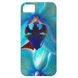 Orquídea azul iPhone 5 carcasa