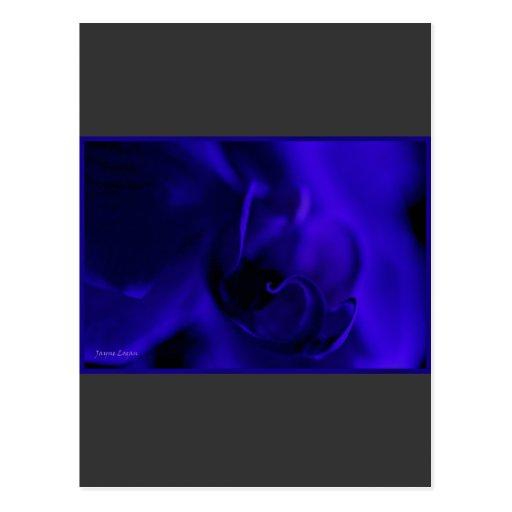 Orquídea azul profunda, floral macro, plantilla postal