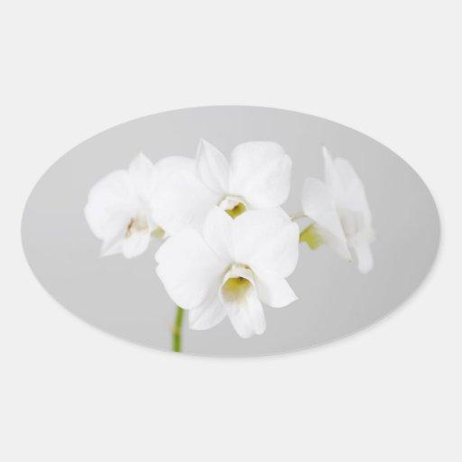 Orquídea blanca (2) pegatina ovaladas personalizadas