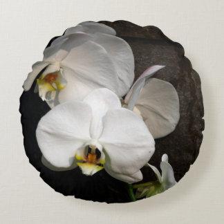 Orquídea blanca cojín redondo