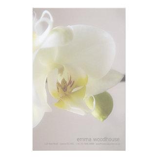 Orquídea blanca • Efectos de escritorio personales Papelería