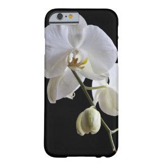 Orquídea blanca en el iPhone negro 6 Funda Para iPhone 6 Barely There