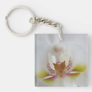 Orquídea blanca llaveros