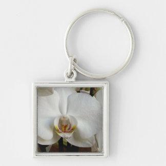 Orquídea blanca llaveros personalizados