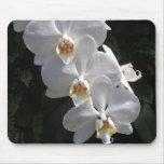 Orquídea blanca Mousepad Alfombrillas De Raton