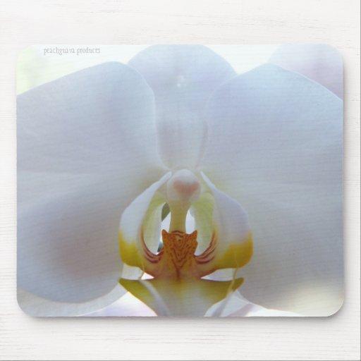 Orquídea blanca Mousepad Tapete De Raton
