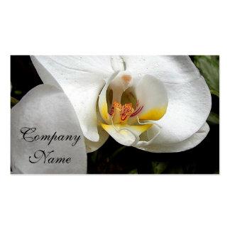 Orquídea blanca tarjetas de visita