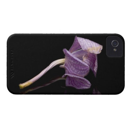 Orquídea caida Case-Mate iPhone 4 fundas