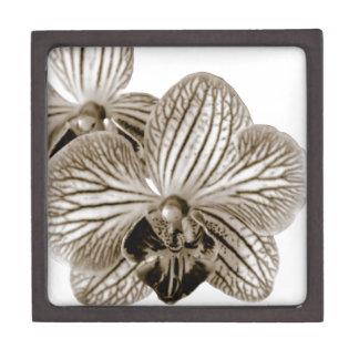Orquídea Cajas De Recuerdo De Calidad