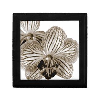 Orquídea Caja De Recuerdo