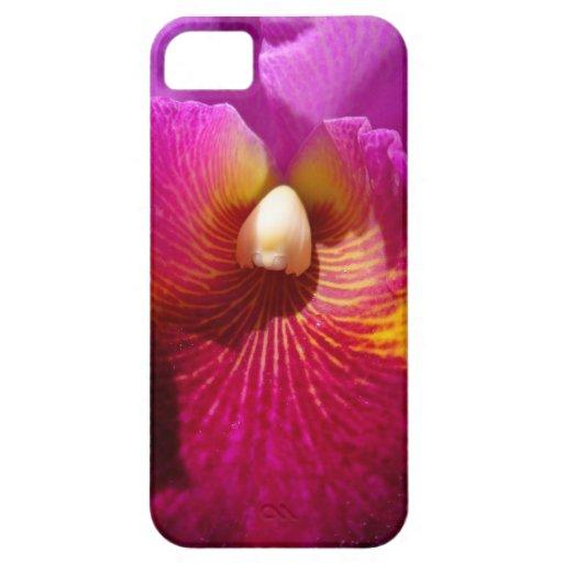 Orquídea de Cattleya iPhone 5 Fundas