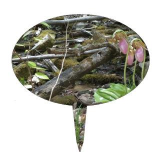 Orquídea de deslizador de señora rosada decoraciones de tartas