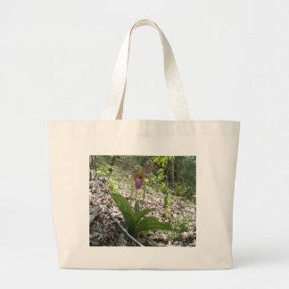 Orquídea de deslizador de señora rosada bolsa