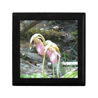 Orquídea de deslizador de señora rosada caja de recuerdo