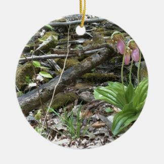 Orquídea de deslizador de señora rosada ornamentos de reyes
