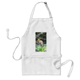 Orquídea de deslizador de señora rosada delantales