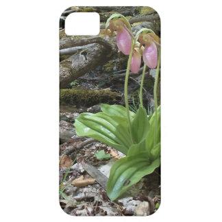 Orquídea de deslizador de señora rosada funda para iPhone 5 barely there