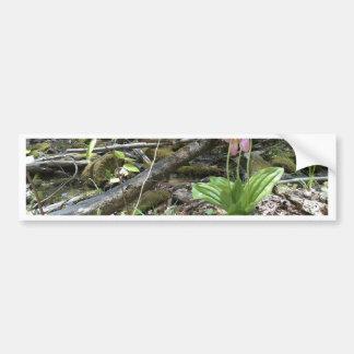 Orquídea de deslizador de señora rosada pegatina para auto