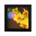 Orquídea de la noche caja de regalo