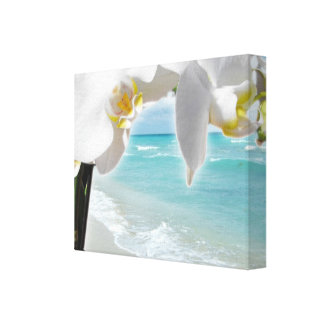 Orquídea de la playa de la aguamarina impresiones en lienzo estiradas