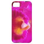 Orquídea de las rosas fuertes iPhone 5 fundas