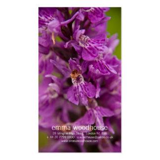 Orquídea de pantano occidental DSC1883 Tarjetas De Visita
