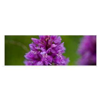 Orquídea de pantano occidental tarjeta de negocio
