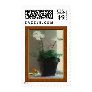 Orquídea de polilla en ventana sello