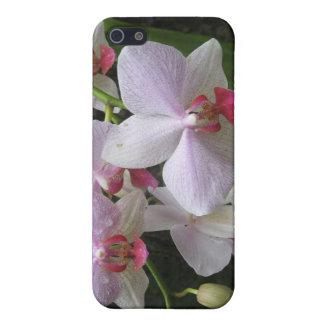 Orquídea de Princeville iPhone 5 Carcasas