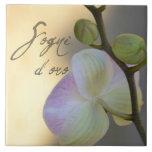 Orquídea de Sogni D'oro (sueños dulces) Azulejo Ceramica
