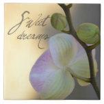 Orquídea de Sogni D'oro (sueños dulces) Teja Cerámica