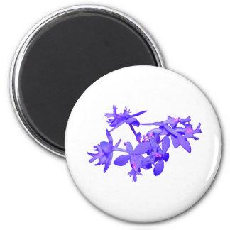 Orquídea de tierra teñida azul de las flores imán redondo 5 cm