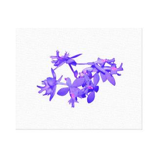 Orquídea de tierra teñida azul de las flores impresion de lienzo