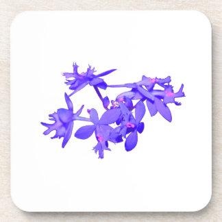 Orquídea de tierra teñida azul de las flores posavaso