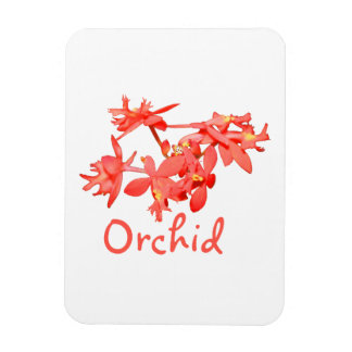 Orquídea de tierra teñida salmones del texto de la imán flexible