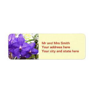 Orquídea de Vanda Pachara Etiqueta De Remite