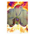 Orquídea del fuego papelería