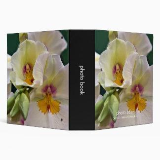 Orquídea del Miltonia • Libro de la foto