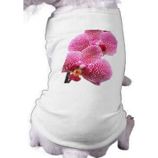 Orquídea del Phalaenopsis Playera Sin Mangas Para Perro