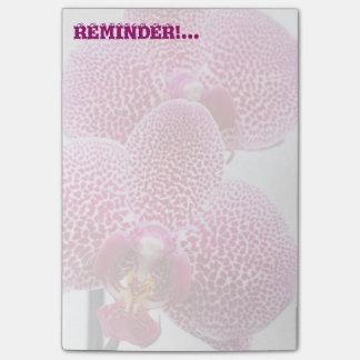 Orquídea del Phalaenopsis Nota Post-it