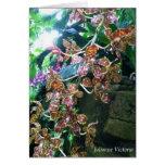 Orquídea del tigre tarjeton