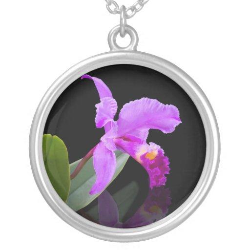 Orquídea en el collar negro